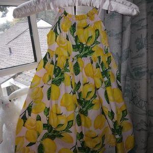 Pink & Yellow Lemon Sundress (3T)